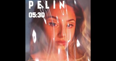 Pelin - 5:30 Şarkı Sözleri